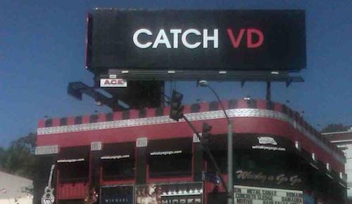 catch-vd-500.jpg