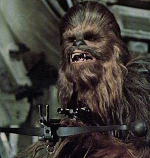 Chewbacca300.jpg