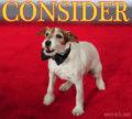Consider Uggie, Day 63: Martin Scorsese Calls Out Artist Wonder Dog; Facebook Fans Surpass 10K