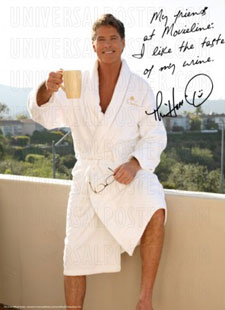thehoff_poster.jpg