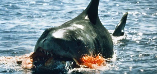 John-Williams-Jaws-Theme-Blu-ray