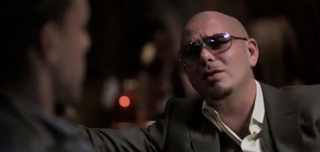 Blood Money Pitbull