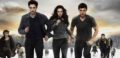 REVIEW: Enjoyably Over-The-Top 'Breaking Dawn - Part 2' Lacks A Certain Je Ne Suck Quoi