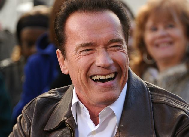 Arnold Schwarzenegger Reddit Last Stand